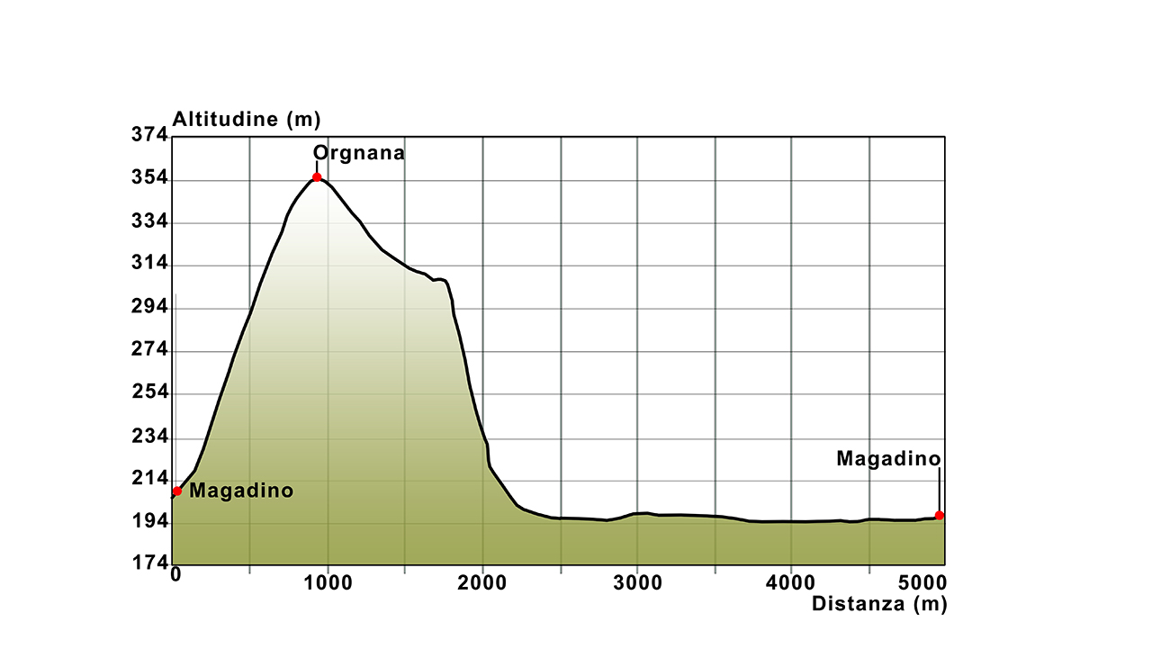 07 Profilo altimetrico Gambarogno -  Magadino
