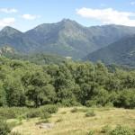 Vista sul Camoghè
